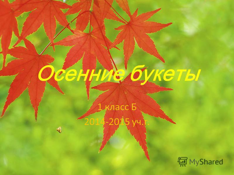 Осенние букеты 1 класс Б 2014-2015 уч.г.