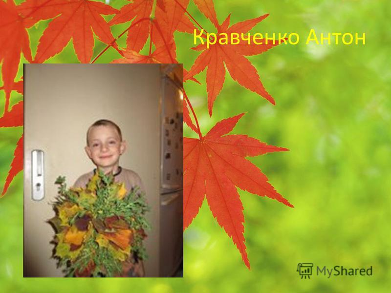 Кравченко Антон