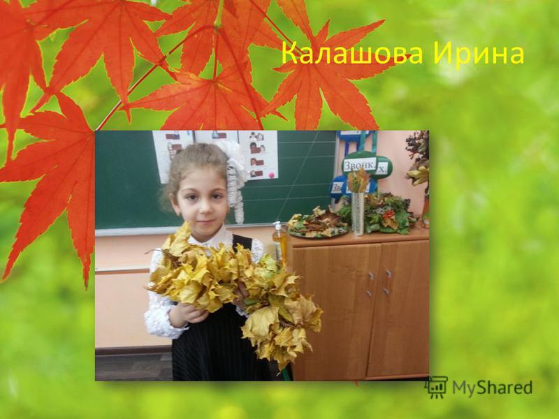 Калашова Ирина