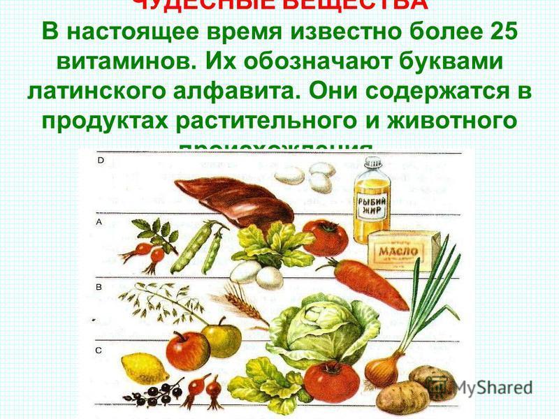 ЧУДЕСНЫЕ ВЕЩЕСТВА В настоящее время известно более 25 витаминов. Их обозначают буквами латинского алфавита. Они содержатся в продуктах растительного и животного происхождения.