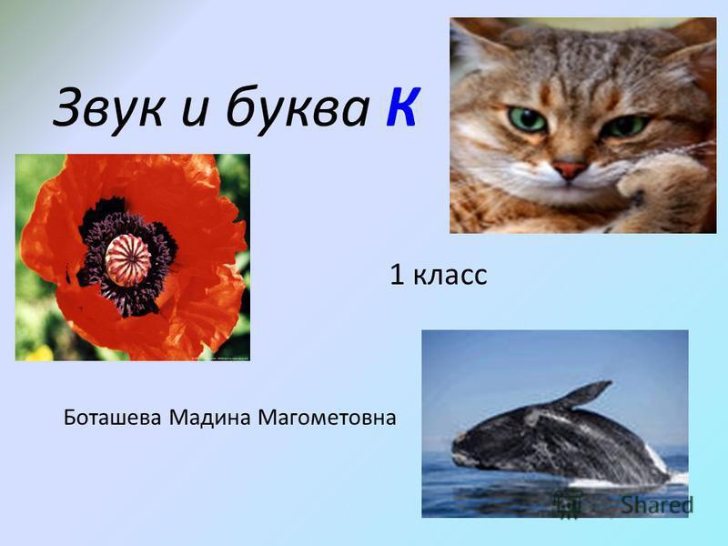 Звук и буква К 1 класс Боташева Мадина Магометовна