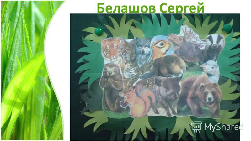 Белашов Сергей