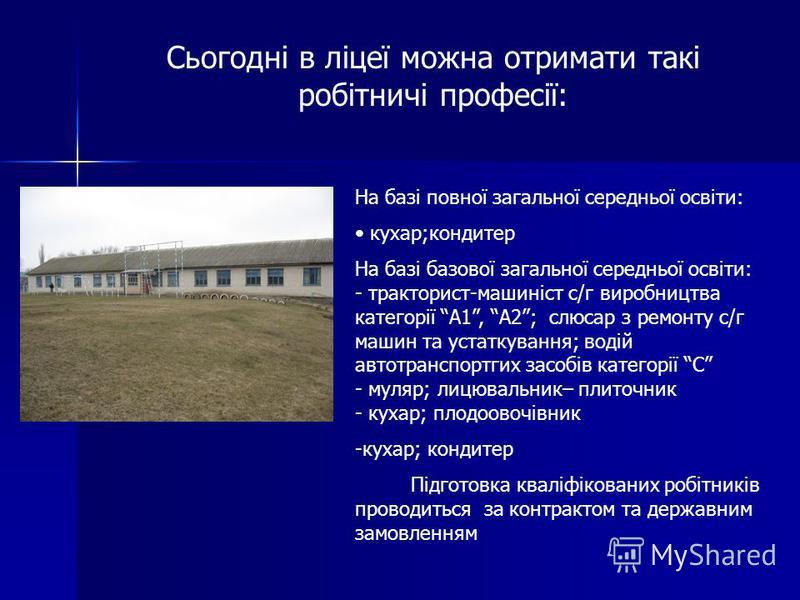 У 1993 році на базі професійних груп Васильківської загальноосвітньої школи було створено Васильківське ПТУ 44, а пізніше - ліцей До 2010 року підготовлено 2223 кваліфікованих робітників