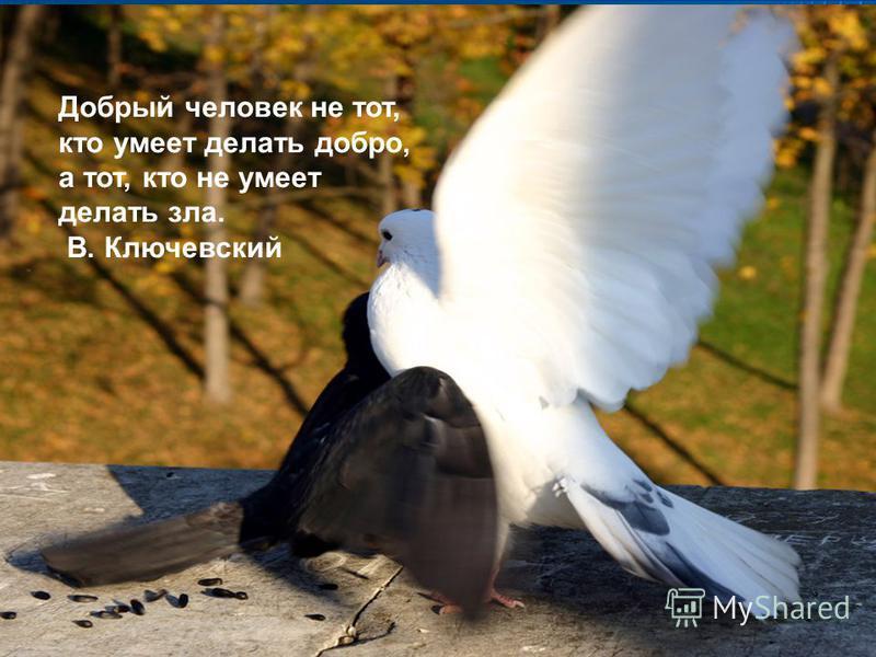 Добрый человек не тот, кто умеет делать добро, а тот, кто не умеет делать зла. В. Ключевский