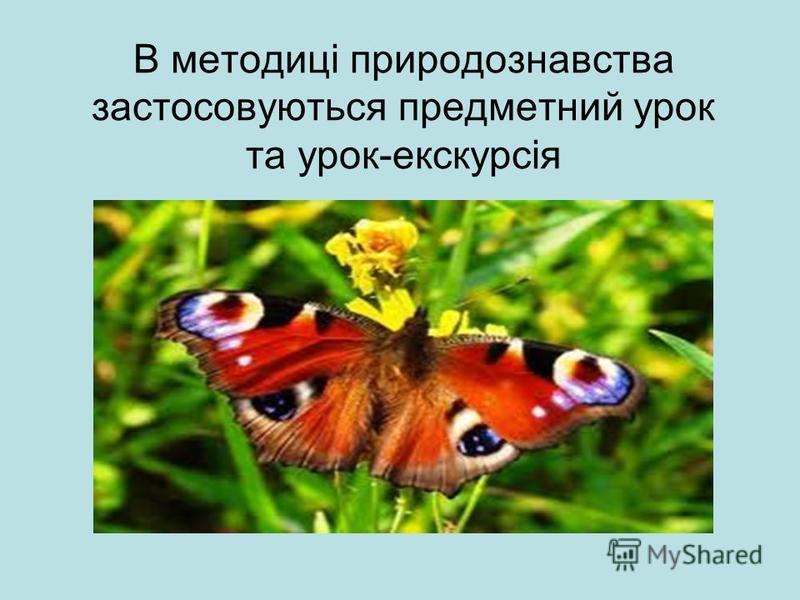 В методиці природознавства застосовуються предметний урок та урок-екскурсія