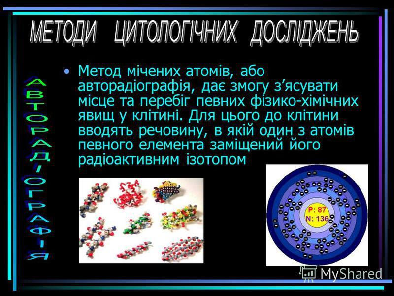 1. Фотографії амеби, зроблені за допомогою: А – світлового мікроскопу; Б – електронного мікроскопу; В – сканувального мікроскопу. 2. Принцип роботи світлового (1), електронного (2) та сканувального (3) мікроскопів