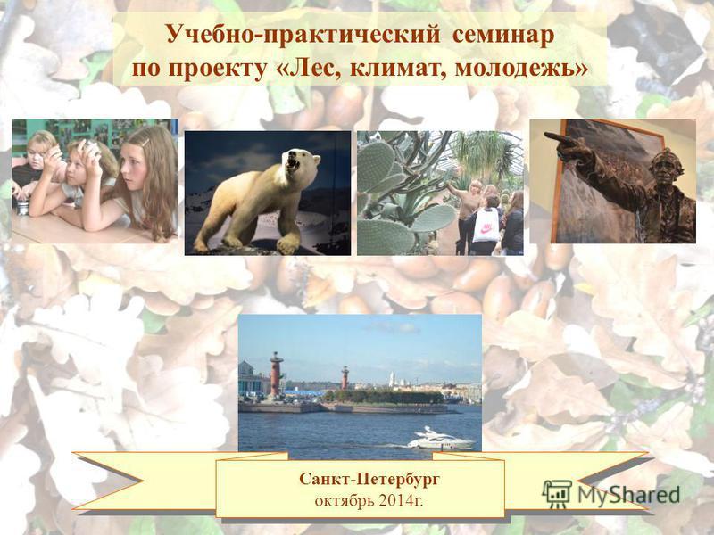Санкт-Петербург октябрь 2014 г. Учебно-практический семинар по проекту «Лес, климат, молодежь»