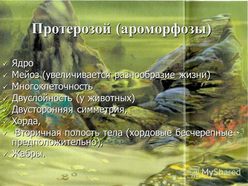 Протерозой (ароморфозы) Ядро Ядро Мейоз (увеличивается разнообразие жизни) Мейоз (увеличивается разнообразие жизни) Многоклеточность Многоклеточность Двуслойность (у животных) Двуслойность (у животных) Двусторонняя симметрия, Двусторонняя симметрия,