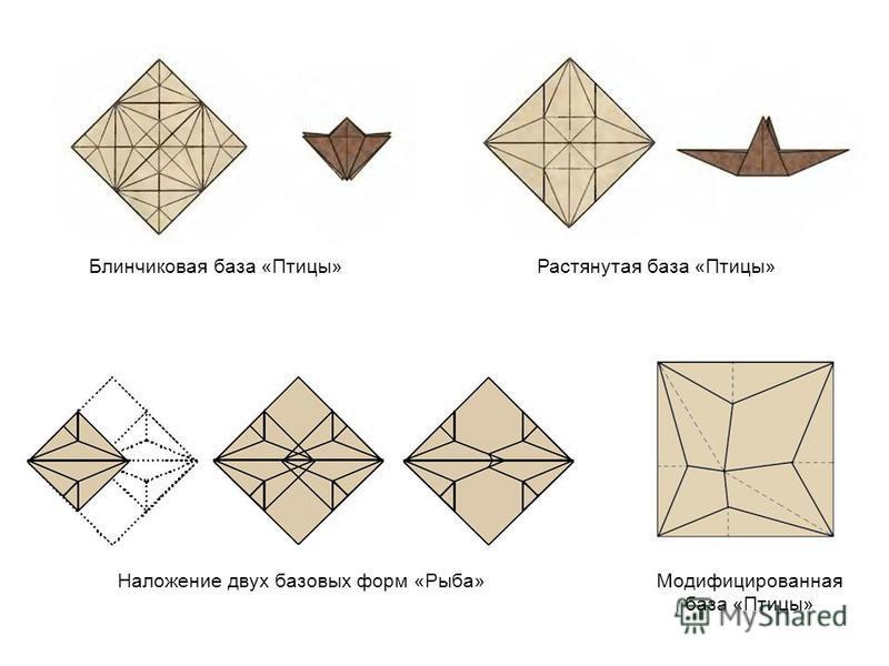 Наложение двух базовых форм «Рыба» Растянутая база «Птицы» Блинчиковая база «Птицы» Модифицированная база «Птицы»