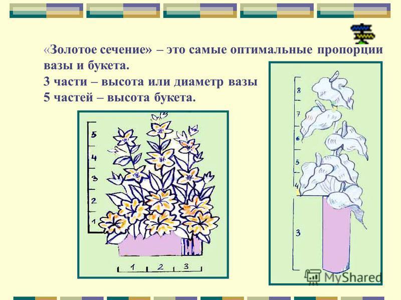«Золотое сечение» – это самые оптимальные пропорции вазы и букета. 3 части – высота или диаметр вазы 5 частей – высота букета.