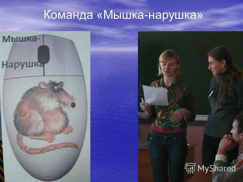 Команда «Мышка-норушка»