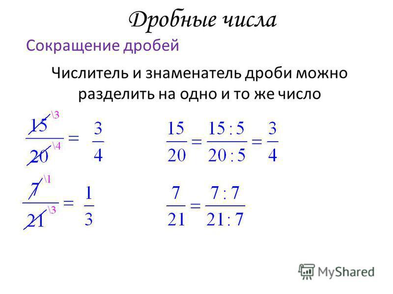 Дробные числа Сокращение дробей Числитель и знаменатель дроби можно разделить на одно и то же число