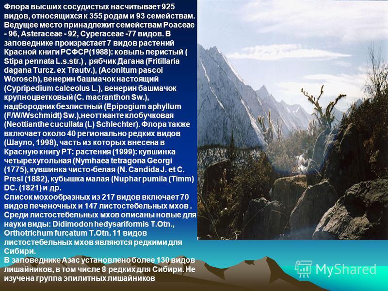 Флора высших сосудистых насчитывает 925 видов, относящихся к 355 родам и 93 семействам. Ведущее место принадлежит семействам Poaceae - 96, Asteraceae - 92, Cyperaceae -77 видов. В заповеднике произрастает 7 видов растений Красной книги РСФСР(1988): к