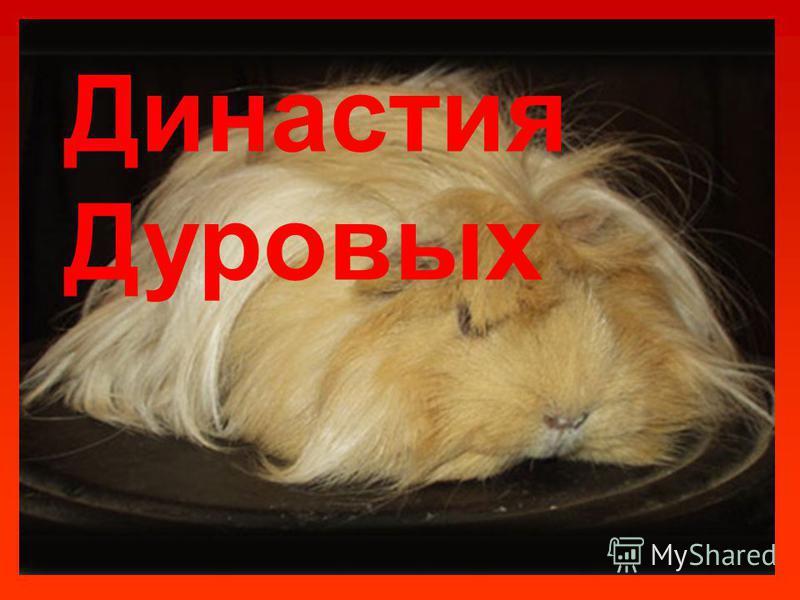 Династия Дуровых