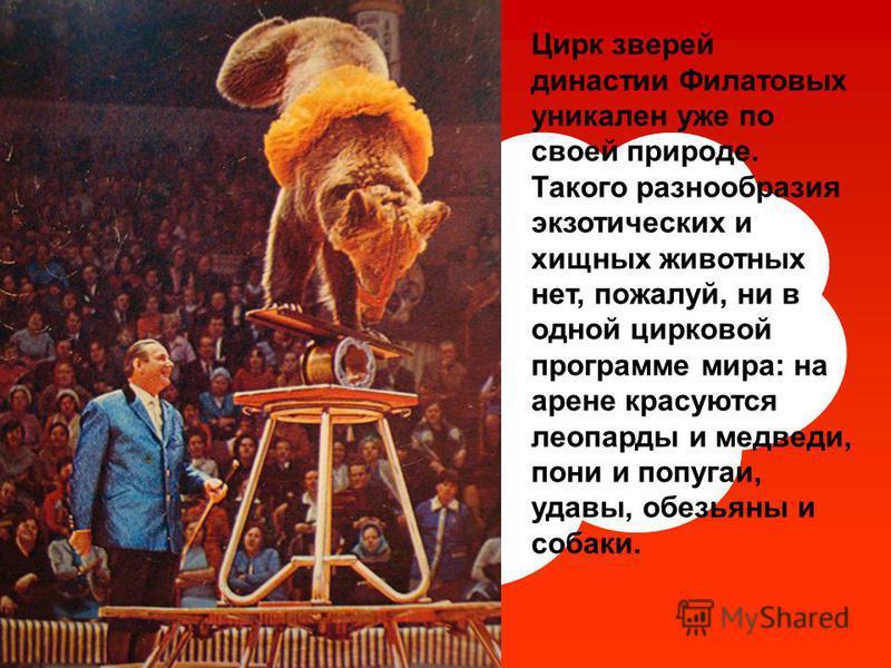 Цирк зверей династии Филатовых уникален уже по своей природе. Такого разнообразия экзотических и хищных животных нет, пожалуй, ни в одной цирковой программе мира: на арене красуются леопарды и медведи, пони и попугаи, удавы, обезьяны и собаки.