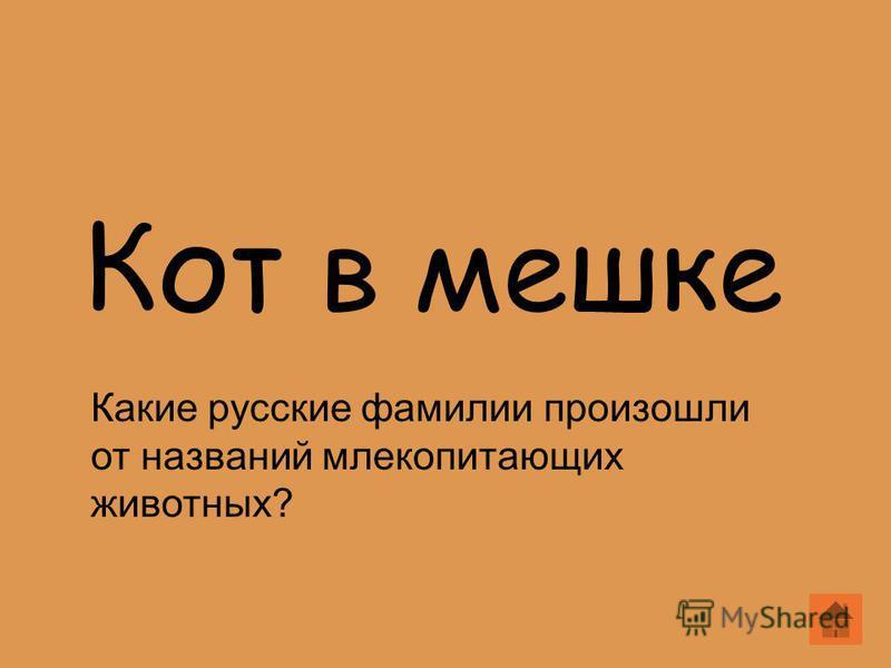 Кот в мешке Какие русские фамилии произошли от названий млекопитающих животных?