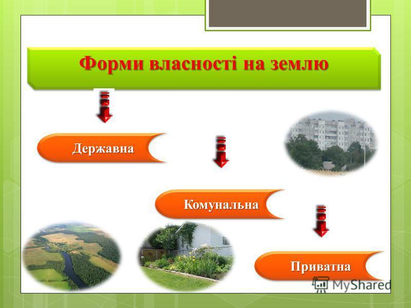 Форми власності на землю ДержавнаДержавна КомунальнаКомунальна ПриватнаПриватна