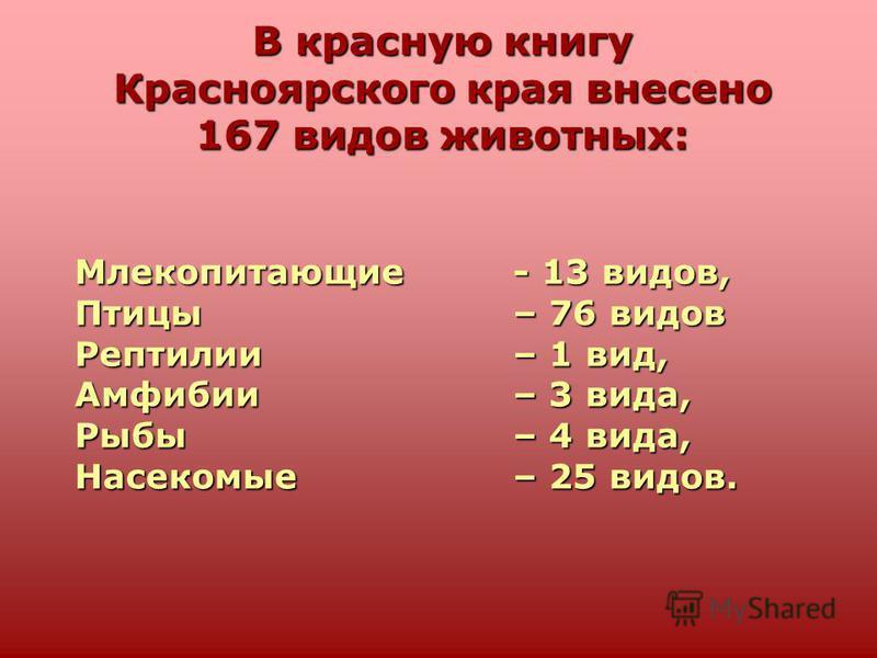 В красную книгу Красноярского края внесено 167 видов животных: Млекопитающие - 13 видов, Птицы– 76 видов Рептилии– 1 вид, Амфибии– 3 вида, Рыбы – 4 вида, Насекомые – 25 видов.