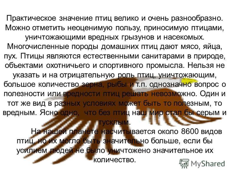 Большой пестрый дятел Наиболее обычен в нашей фауне. Обитает на всей территории Краснодарского края в лиственных и хвойных лесах, как на равнинной, так и в среднегорной части. Можно встретить в городских парках и рощах. Питается в основном личинками