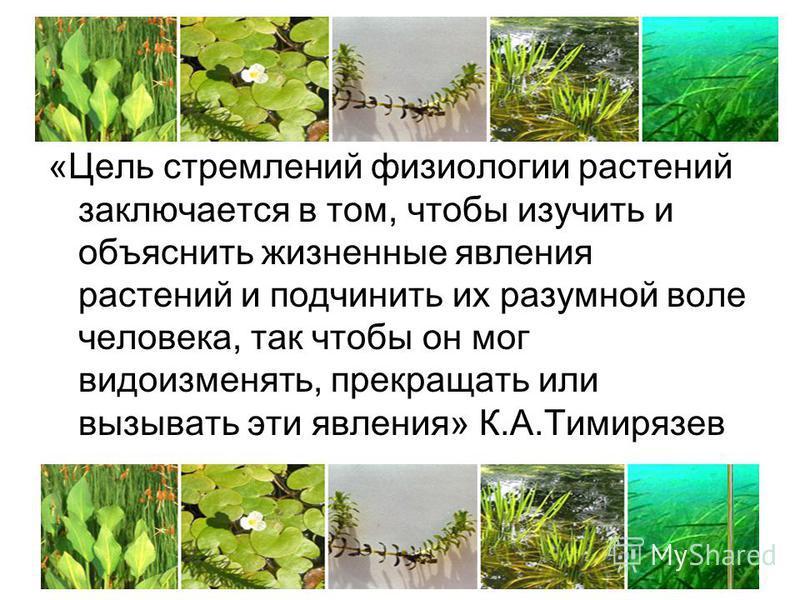 «Цель стремлений физиологии растений заключается в том, чтобы изучить и объяснить жизненные явления растений и подчинить их разумной воле человека, так чтобы он мог видоизменять, прекращать или вызывать эти явления» К.А.Тимирязев