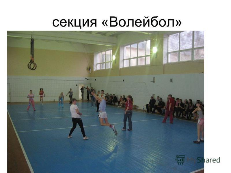 секция «Волейбол»