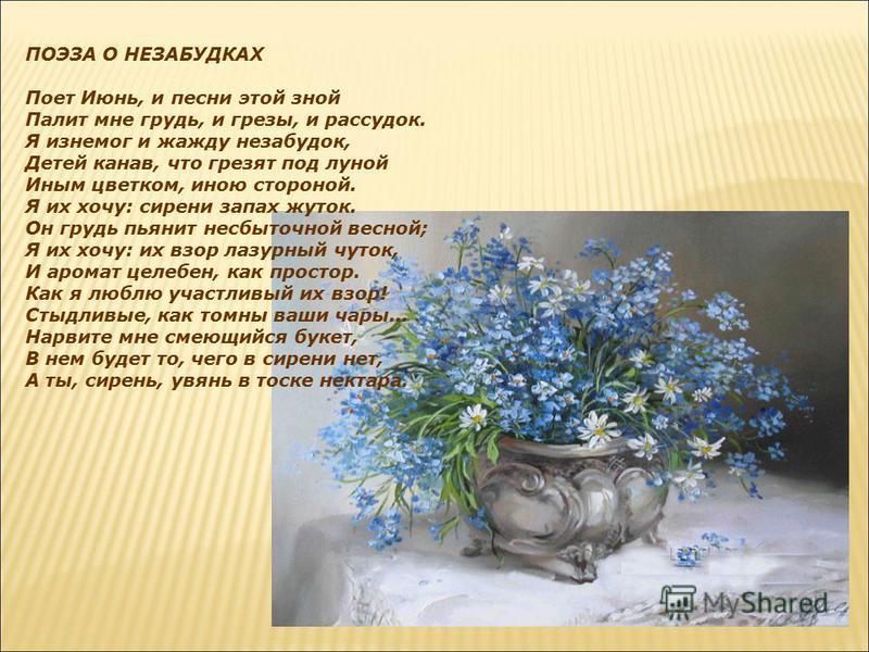 ПОЭЗА О НЕЗАБУДКАХ Поет Июнь, и песни этой зной Палит мне грудь, и грезы, и рассудок. Я изнемог и жажду незабудок, Детей канав, что грезят под луной Иным цветком, иною стороной. Я их хочу: сирени запах жуток. Он грудь пьянит несбыточной весной; Я их