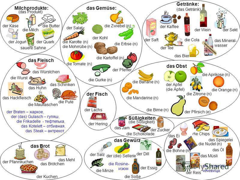 Milchprodukte: der Käse die Milch der Jogurt das Gemüse: der Salat die Zwiebel (n) der Kohl die Erbse (n) die Karotte (n) die Mohrrübe (n) die Kartoffel (n) die Tomate (n) die Gurke (n) der Pfeffer Getränke: (das Getränk) der Saft der Wein der Kaffee