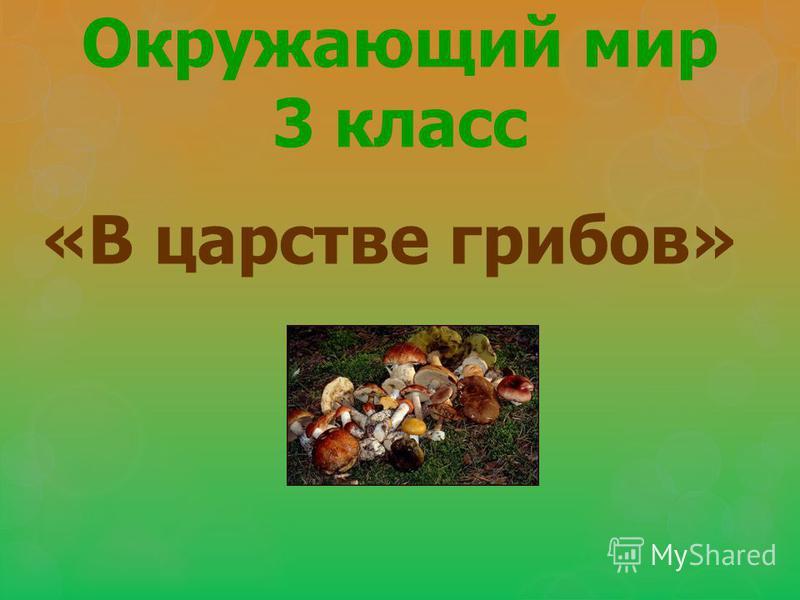 Окружающий мир 3 класс «В царстве грибов»