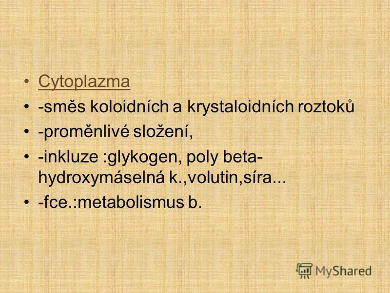 Cytoplazma -směs koloidních a krystaloidních roztoků -proměnlivé složení, -inkluze :glykogen, poly beta- hydroxymáselná k.,volutin,síra... -fce.:metabolismus b.