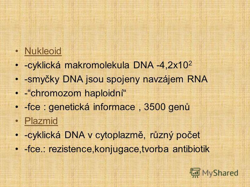 Nukleoid -cyklická makromolekula DNA -4,2x10 2 -smyčky DNA jsou spojeny navzájem RNA -chromozom haploidní -fce : genetická informace, 3500 genů Plazmid -cyklická DNA v cytoplazmě, různý počet -fce.: rezistence,konjugace,tvorba antibiotik