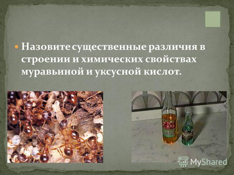 Назовите существенные различия в строении и химических свойствах муравьиной и уксусной кислот.
