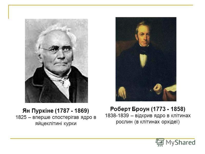Роберт Броун (1773 - 1858) 1838-1839 – відкрив ядро в клітинах рослин (в клітинах орхідеї) Ян Пуркіне (1787 - 1869) 1825 – вперше спостерігав ядро в яйцеклітині курки