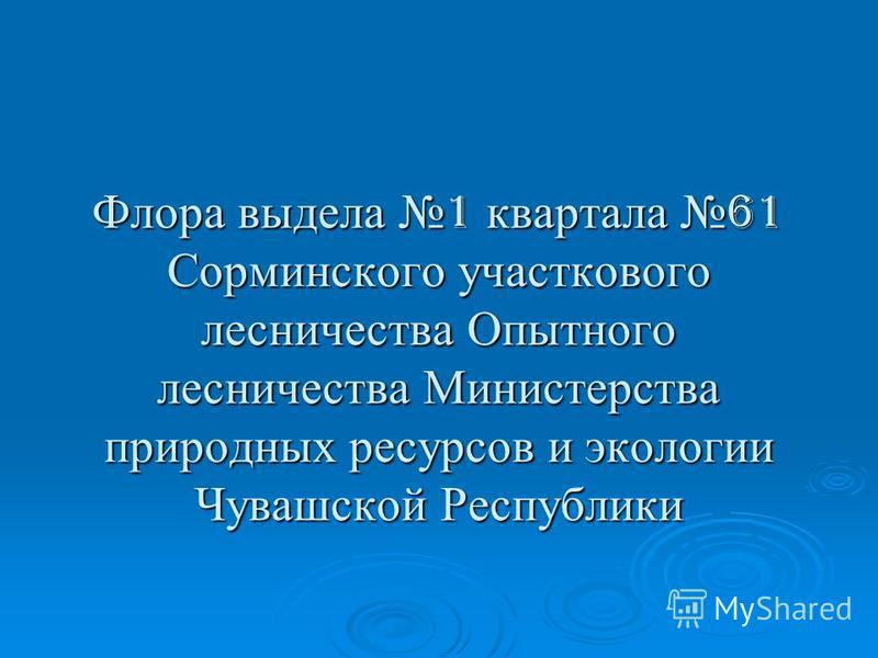 Флора выдела 1 квартала 61 Сорминского участкового лесничества Опытного лесничества Министерства природных ресурсов и экологии Чувашской Республики