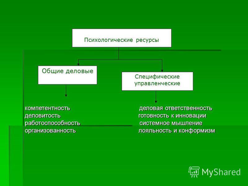 Психологические ресурсы Общие деловые Специфические управленческие компетентность деловая ответственность деловитость готовность к инновации работоспособность системное мышление организованность лояльность и конформизм