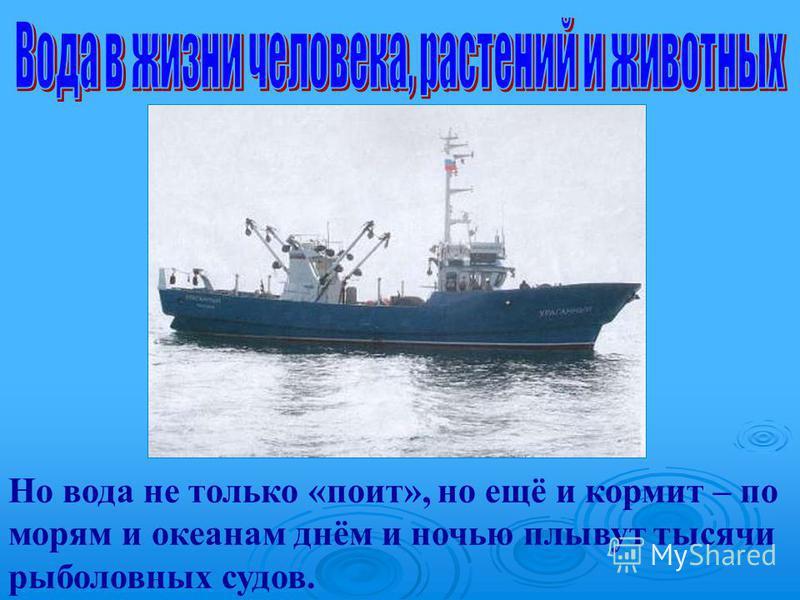 Но вода не только «поит», но ещё и кормит – по морям и океанам днём и ночью плывут тысячи рыболовных судов.