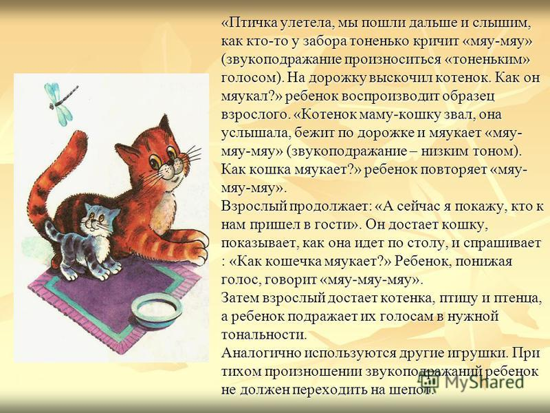«Птичка улетела, мы пошли дальше и слышим, как кто-то у забора тоненько кричит «мяу-мяу» (звукоподражание произноситься «тоненьким» голосом). На дорожку выскочил котенок. Как он мяукал?» ребенок воспроизводит образец взрослого. «Котенок маму-кошку зв