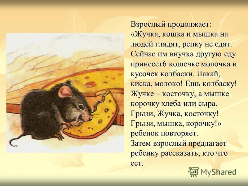 Взрослый продолжает: «Жучка, кошка и мышка на людей глядят, репку не едят. Сейчас им внучка другую еду принесет 6 кошечке молочка и кусочек колбаски. Лакай, киска, молоко! Ешь колбаску! Жучке – косточку, а мышке корочку хлеба или сыра. Грызи, Жучка,