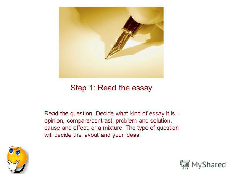 The Types Of Essay