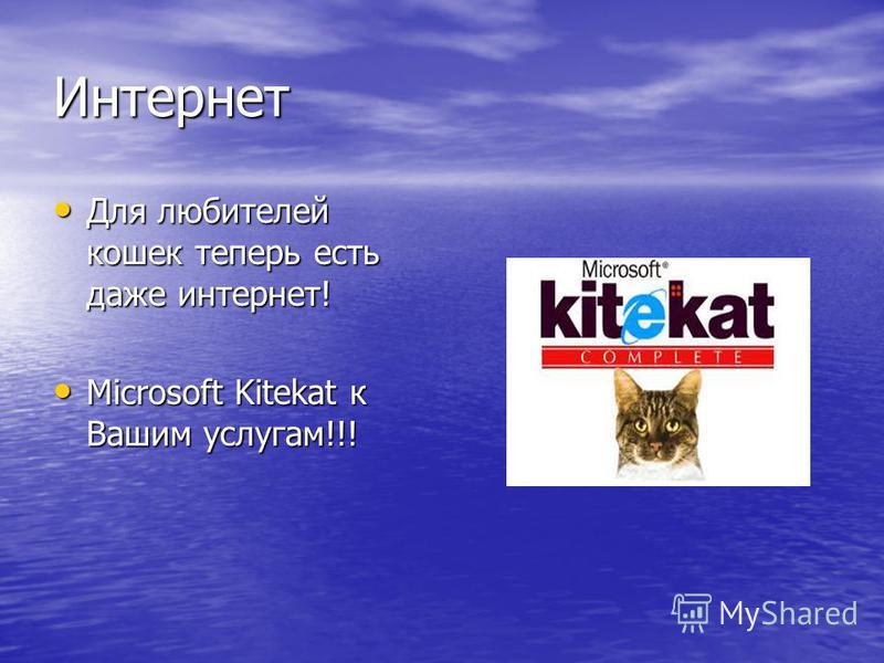 Интернет Для любителей кошек теперь есть даже интернет! Для любителей кошек теперь есть даже интернет! Microsoft Kitekat к Вашим услугам!!! Microsoft Kitekat к Вашим услугам!!!