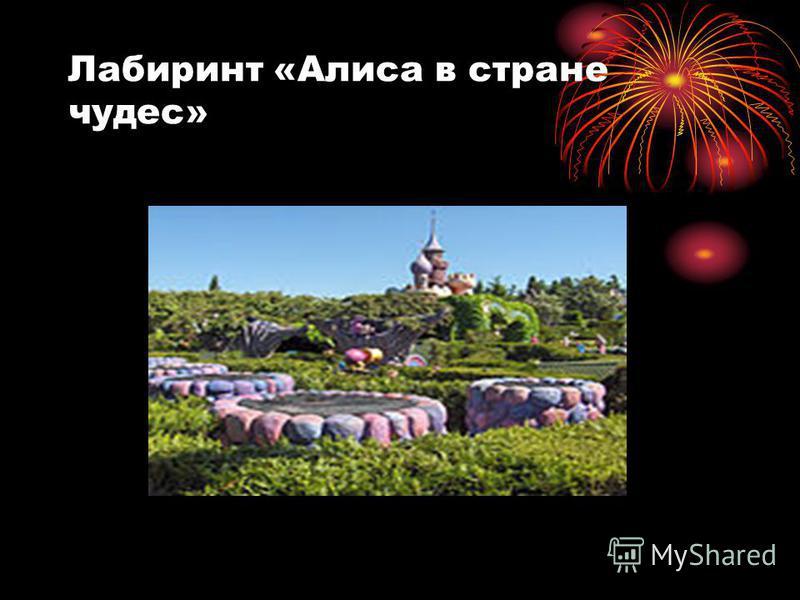 Лабиринт «Алиса в стране чудес»