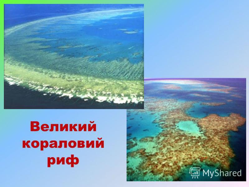 Великий кораловий риф