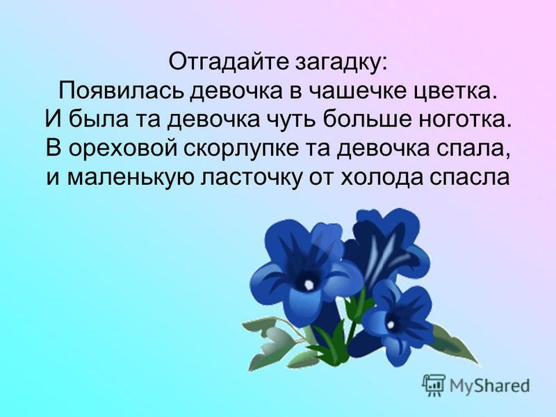 Отгадайте загадку: Появилась девочка в чашечке цветка. И была та девочка чуть больше ноготка. В ореховой скорлупке та девочка спала, и маленькую ласточку от холода спасла