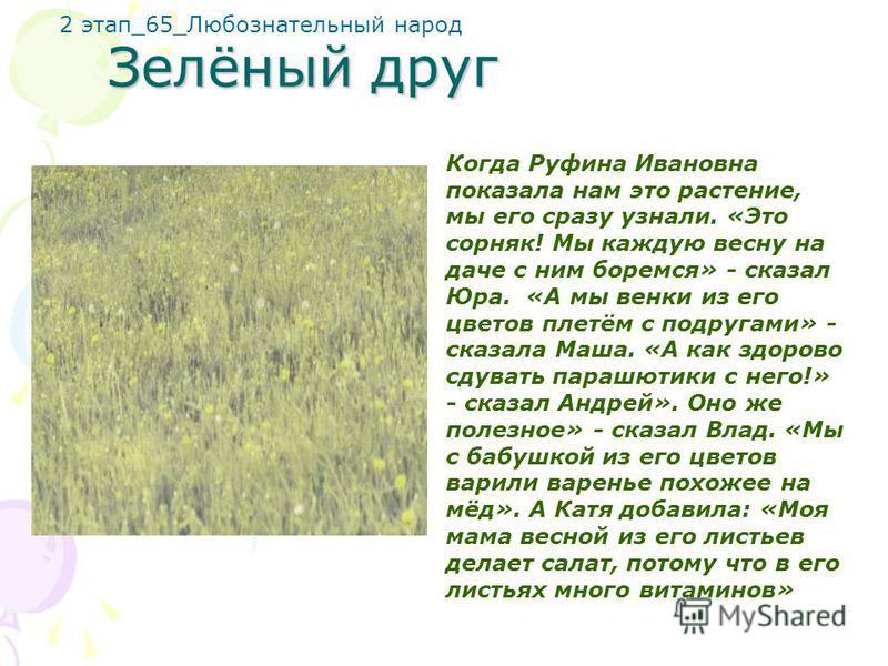 Зелёный друг Когда Руфина Ивановна показала нам это растение, мы его сразу узнали. «Это сорняк! Мы каждую весну на даче с ним боремся» - сказал Юра. «А мы венки из его цветов плетём с подругами» - сказала Маша. «А как здорово сдувать парашютики с нег
