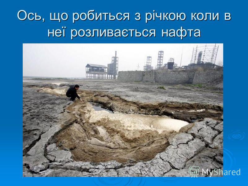 Ось, що робиться з річкою коли в неї розливається нафта