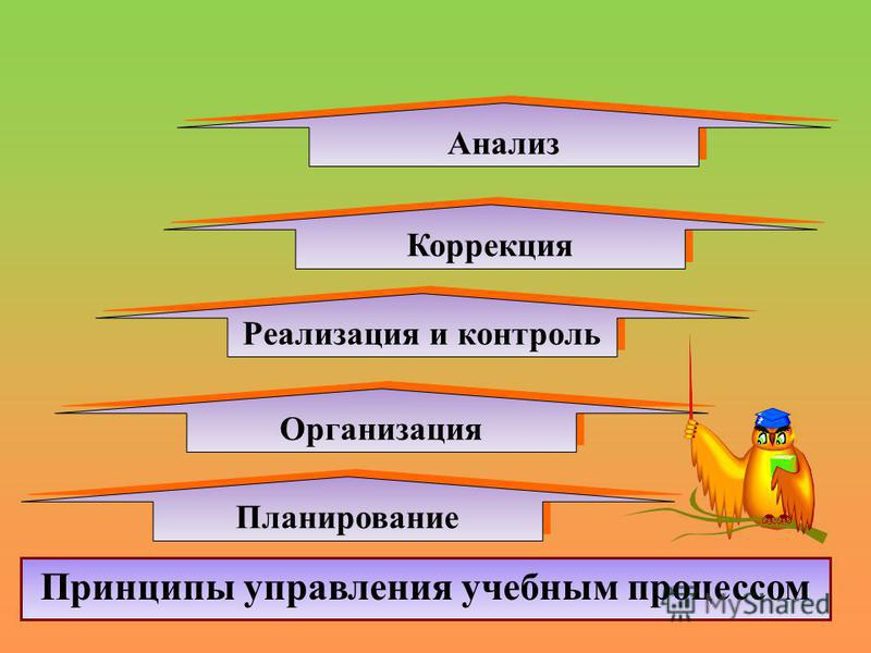 Организация Принципы управления учебным процессом Реализация и контроль Планирование Коррекция Анализ
