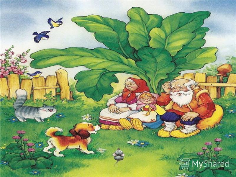 Всех важней она в загадке, Хоть и в погребе жила: Репку вытащить из грядки Деду с бабкой помогла. (мышка) Репка