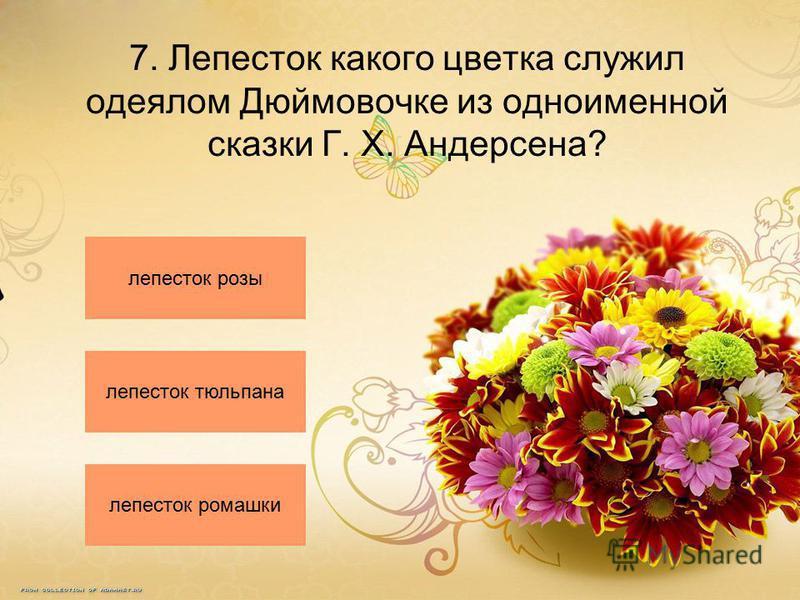 7. Лепесток какого цветка служил одеялом Дюймовочке из одноименной сказки Г. Х. Андерсена? лепесток розы лепесток тюльпана лепесток ромашки