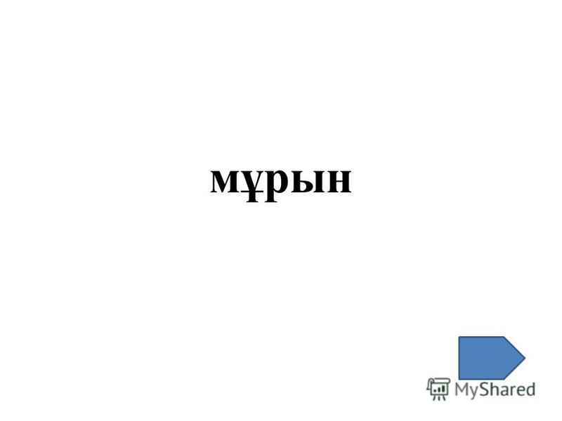 мұрын