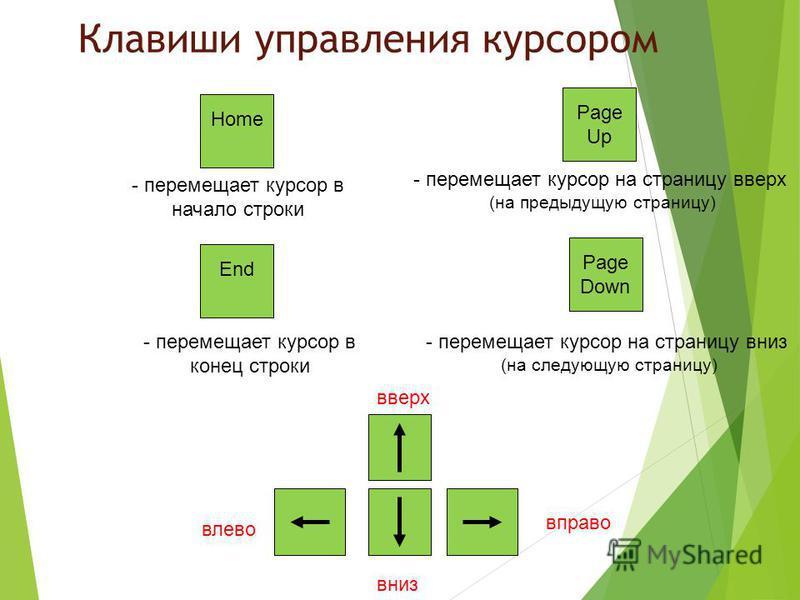 Клавиши управления курсором Home End - перемещает курсор в начало строки - перемещает курсор в конец строки Page Up Page Down - перемещает курсор на страницу вверх (на предыдущую страницу) - перемещает курсор на страницу вниз (на следующую страницу)