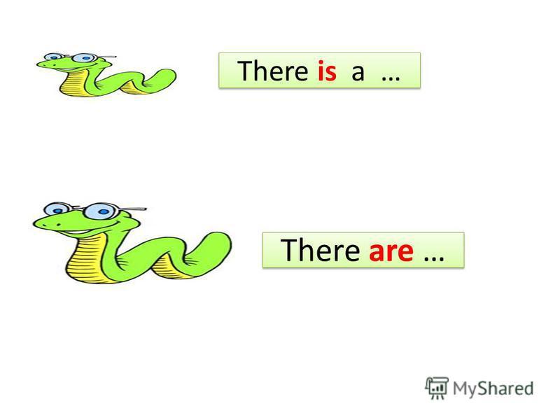 There is a … There is a … There are … There are …